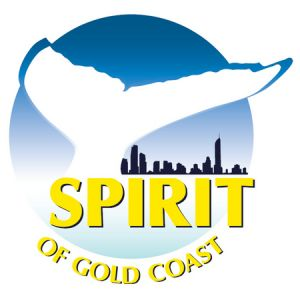 Spirit of Gold Coast Whale Watching - Attractions Brisbane