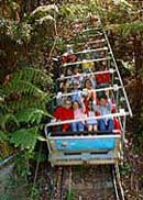 Scenic World Blue Mountains - Attractions Brisbane