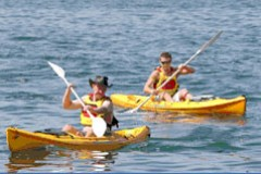 Manly Kayaks - Attractions Brisbane