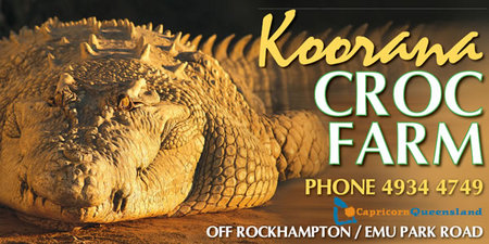 Koorana Saltwater Crocodile Farm - Attractions Brisbane