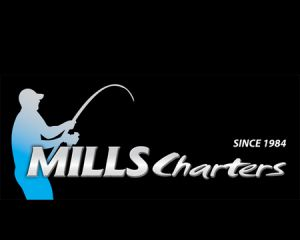Mills Charters Fishing and Whale Watch Cruises - Attractions Brisbane