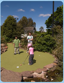 Wetlands Mini Golf - Attractions Brisbane