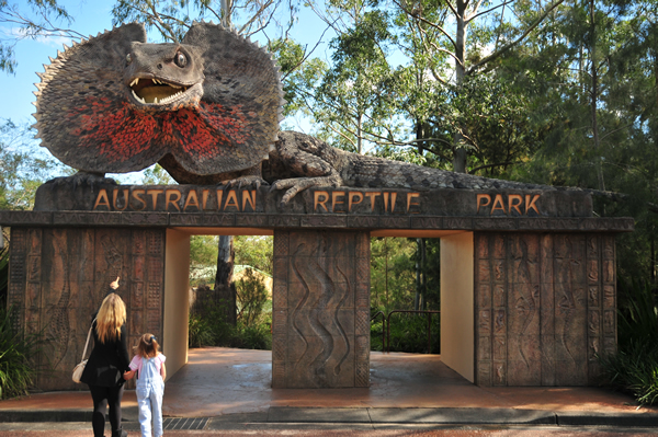Australian Reptile Park - Attractions Brisbane