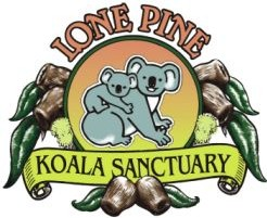 Lone Pine Koala Sanctuary - Attractions Brisbane