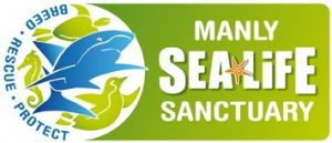 Manly SEA LIFE Sanctuary - Attractions Brisbane