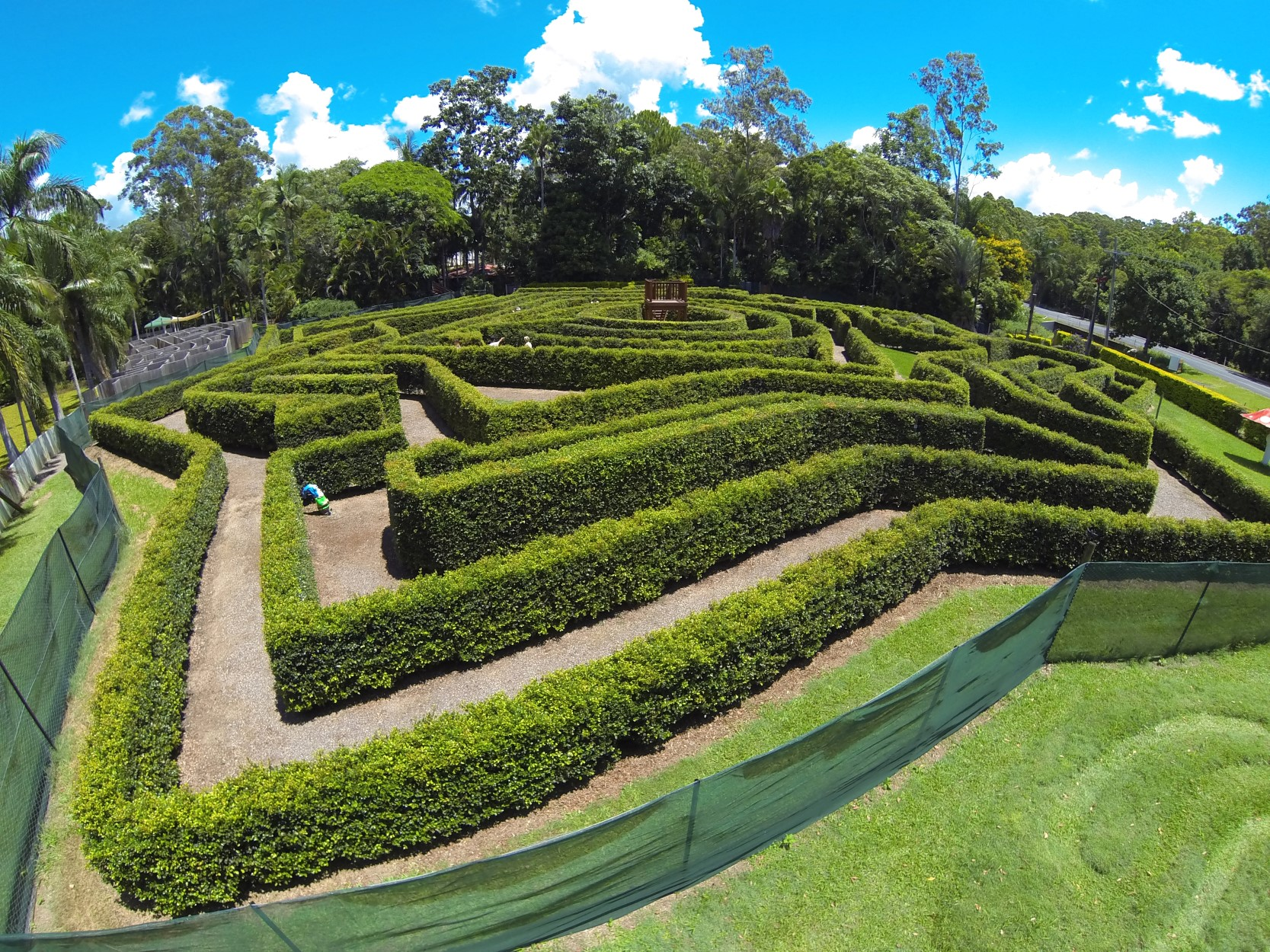 Bellingham Maze - Attractions Brisbane