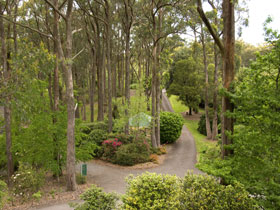 Mount Lofty Botanic Garden - Attractions Brisbane