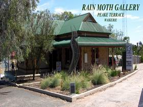 Rain Moth Gallery - Attractions Brisbane