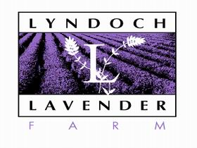 Lyndoch Lavender Farm and Cafe - Attractions Brisbane