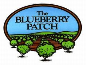 The Blueberry Patch - Attractions Brisbane
