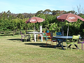 Cerise Brook Orchard  Family Golf - Attractions Brisbane
