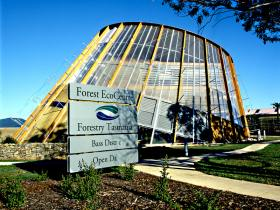 Forest EcoCentre - Attractions Brisbane