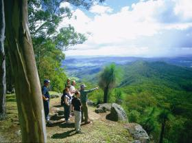 Gold Coast Hinterland Great Walk - Attractions Brisbane