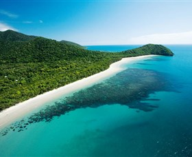 Cape Tribulation Daintree National Park - Attractions Brisbane
