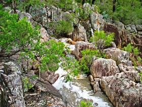 Crows Nest National Park - Attractions Brisbane