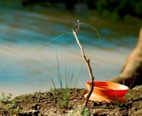 Charleville - Mangalore Warrego River Fishing Spot - Attractions Brisbane