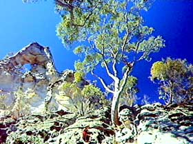 Mount Moffatt Section - Carnarvon National Park - Attractions Brisbane