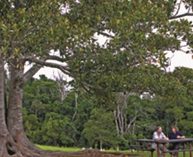 Ravensbourne National Park - Attractions Brisbane