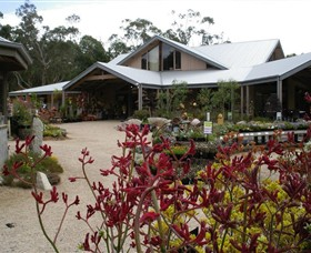 Kuranga Native Nursery and Paperbark Cafe - Attractions Brisbane