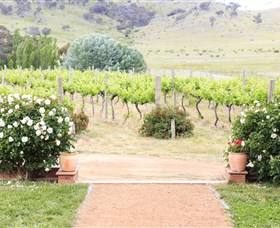 Brindabella Hills Winery - Attractions Brisbane