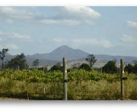 Ironbark Ridge Vineyard - Attractions Brisbane