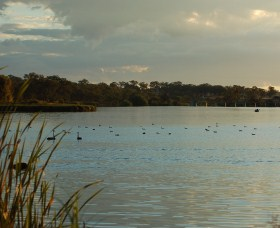 Lake Inverell Reserve - Attractions Brisbane