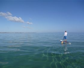 Peninsula Stand Up Paddle - Attractions Brisbane