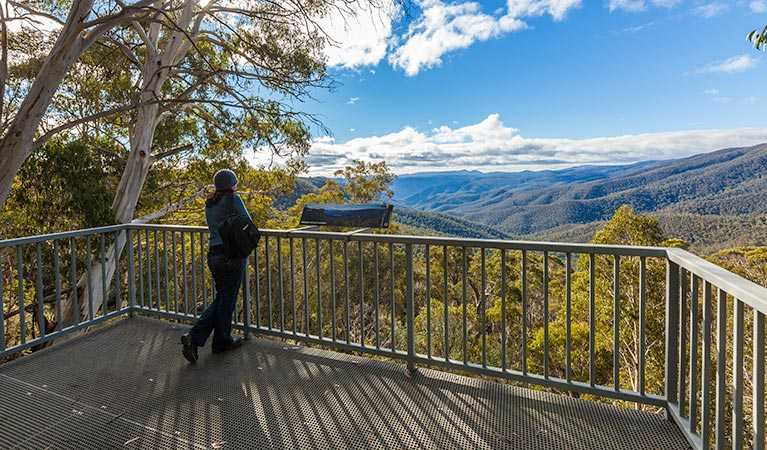 Wallace Creek lookout - Attractions Brisbane