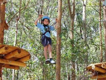 TreeTops Newcastle - Attractions Brisbane