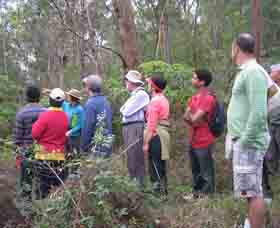 Boronia Tours - Attractions Brisbane