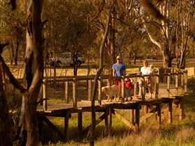 Loxton's Drives Walks and Trails - Attractions Brisbane