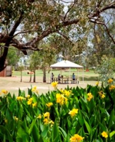Charleville - Graham Andrews Parklands - Attractions Brisbane