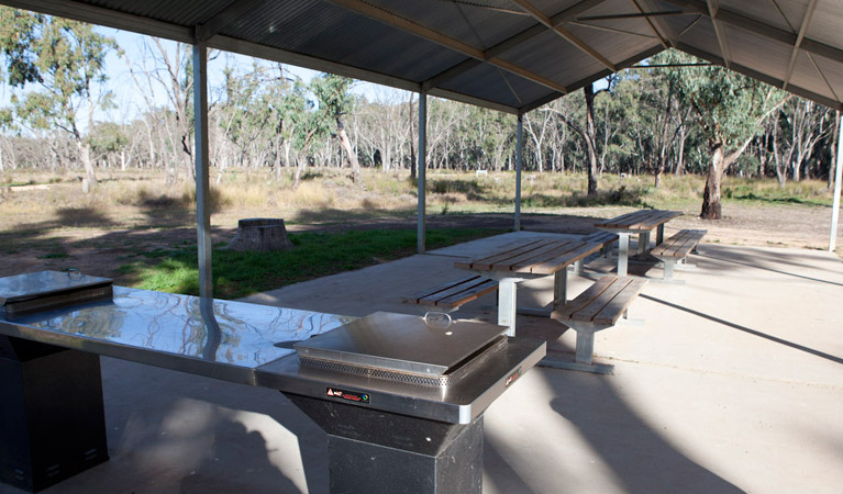 Yanga Woolshed picnic area - Attractions Brisbane