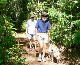 Wongabel State Forest - Attractions Brisbane