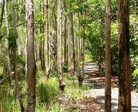 Hallorans Hill Conservation Park - Attractions Brisbane