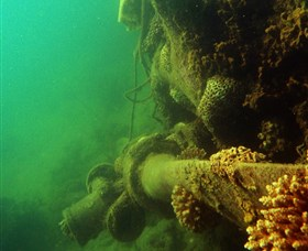 Wreck Diving at Magnetic Island - Attractions Brisbane