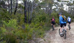 McMahon's Point ride - Wentworth Falls - Attractions Brisbane