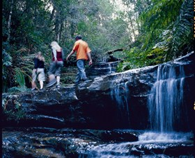 South Lawson Waterfall Circuit - Attractions Brisbane