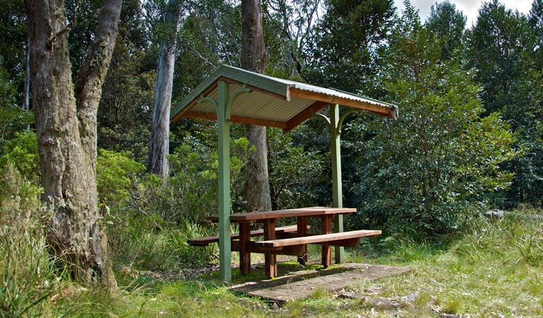 Devils Hole lookout walk and picnic area - Attractions Brisbane