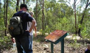 Finchley cultural walk - Attractions Brisbane