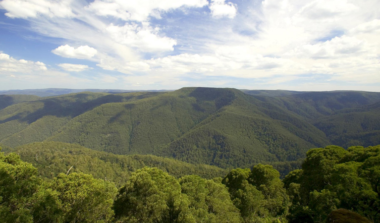 Barrington Tops National Park - Attractions Brisbane