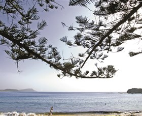 Terrigal Beach - Attractions Brisbane