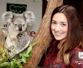 Blackbutt Reserve - Attractions Brisbane