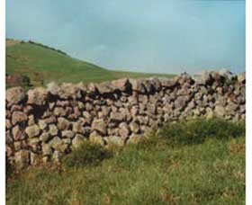 Historic Dry Stone Walls - Attractions Brisbane