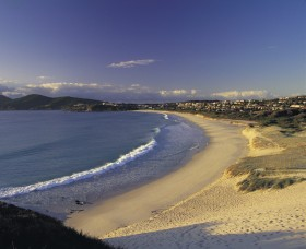 Forster Town Beach - Attractions Brisbane