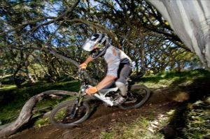 All Terrain Cycles - Attractions Brisbane
