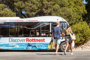 Rottnest Island Tour from Perth or Fremantle including Bus Tour - Attractions Brisbane
