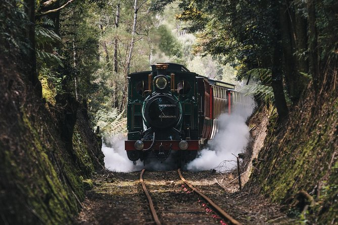 West Coast Wilderness Railway River and Rainforest from Strahan - Attractions Brisbane