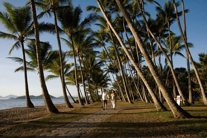 Port Douglas Round-Trip Transfer from Cairns with Free Time in Port Douglas