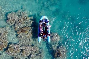 Glass-bottom boat tour with Whitehaven Beach - Attractions Brisbane